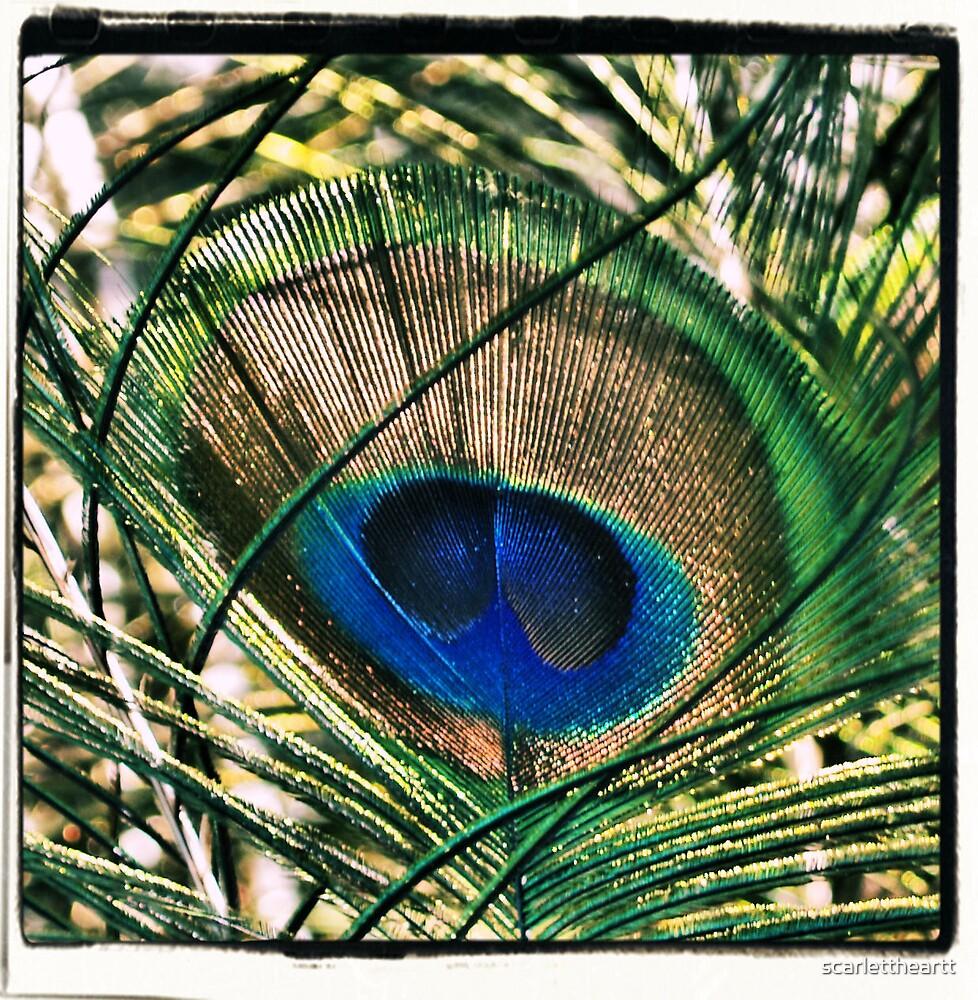 in the blink of an eye by scarlettheartt
