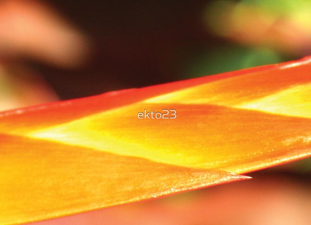Sun Spear by ekto23