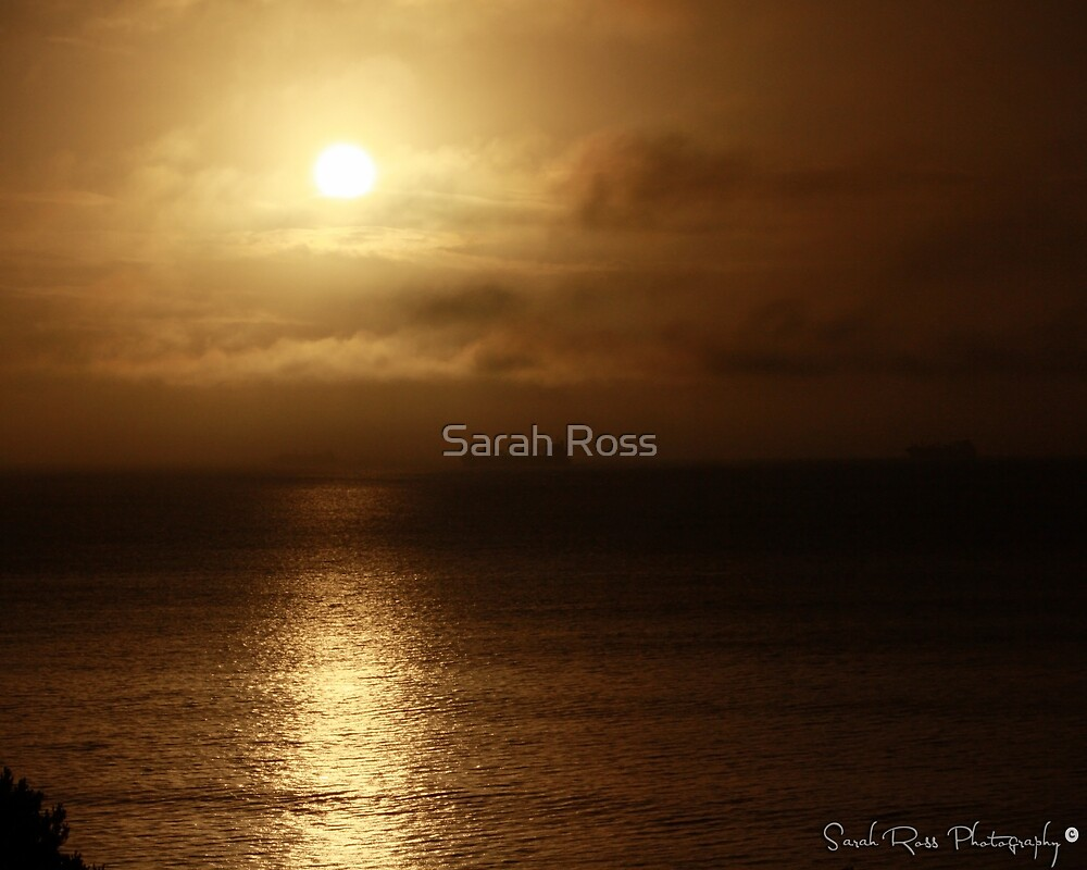 Sun and Sea by Sarah Ross