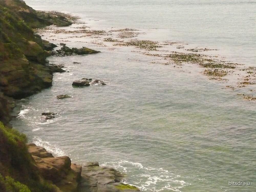 New Zealand Coast by bitsdraw