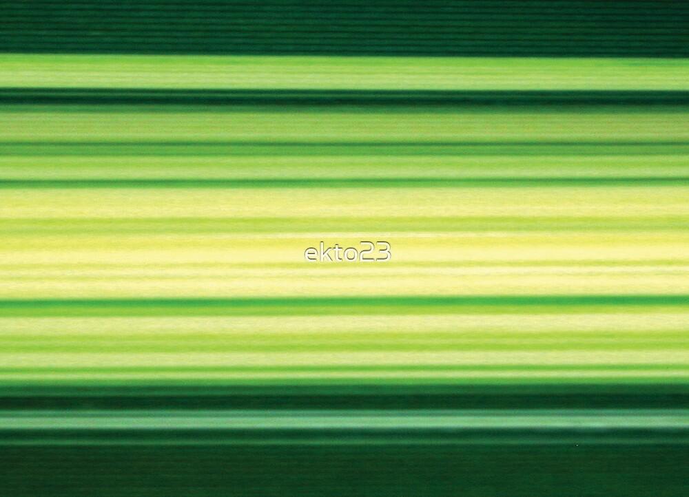Green Grey Leaf Stripes by ekto23