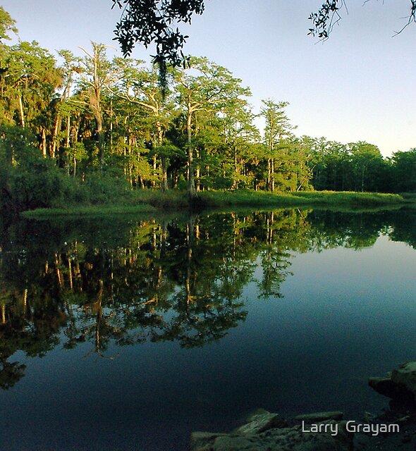 Still Waters by Larry  Grayam