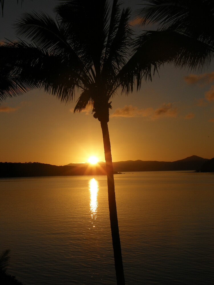 Daydream Sunrise by Sue  Fuller