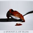 A Spoonful of Bliss by Rowan  Lewgalon