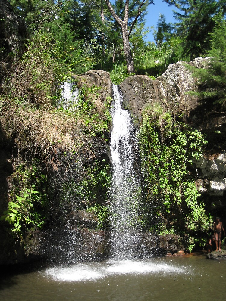 waterfalls near moshi, tanzania by mzungu