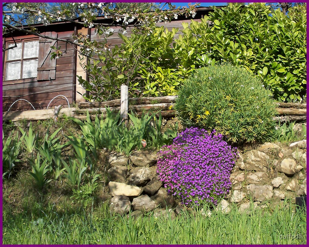Lovely cabin and garden by daffodil