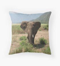elephant in lake manyara, tanzania Throw Pillow