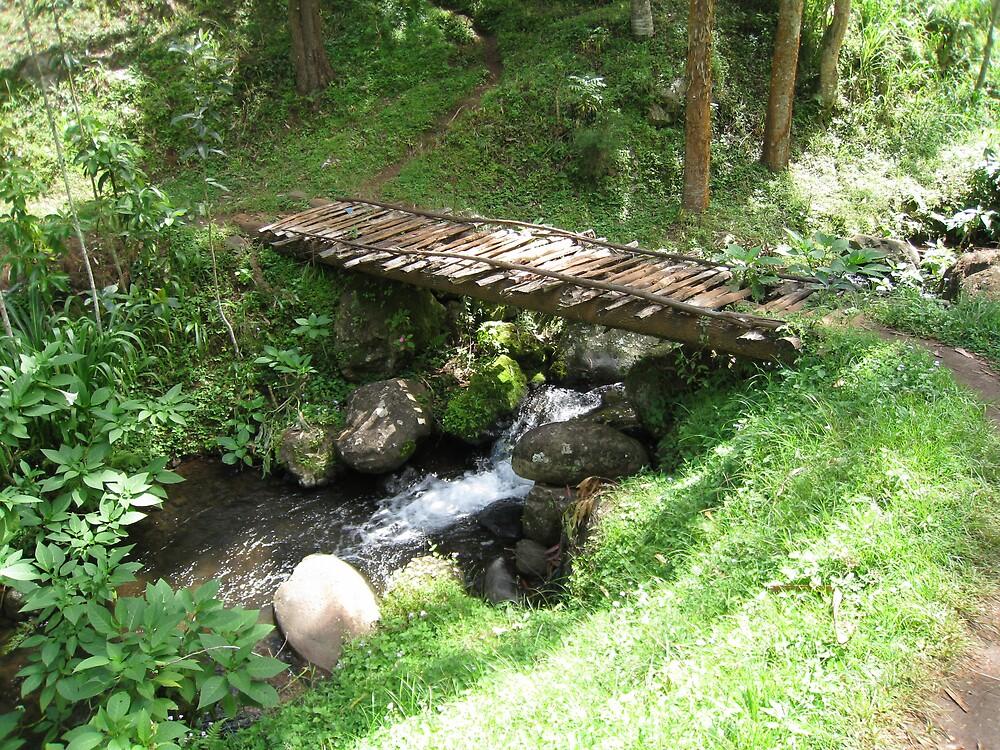 bridge near moshi by mzungu