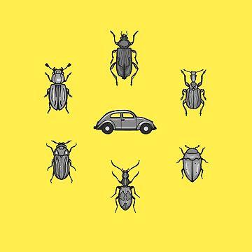 Beetles by FrederickJay