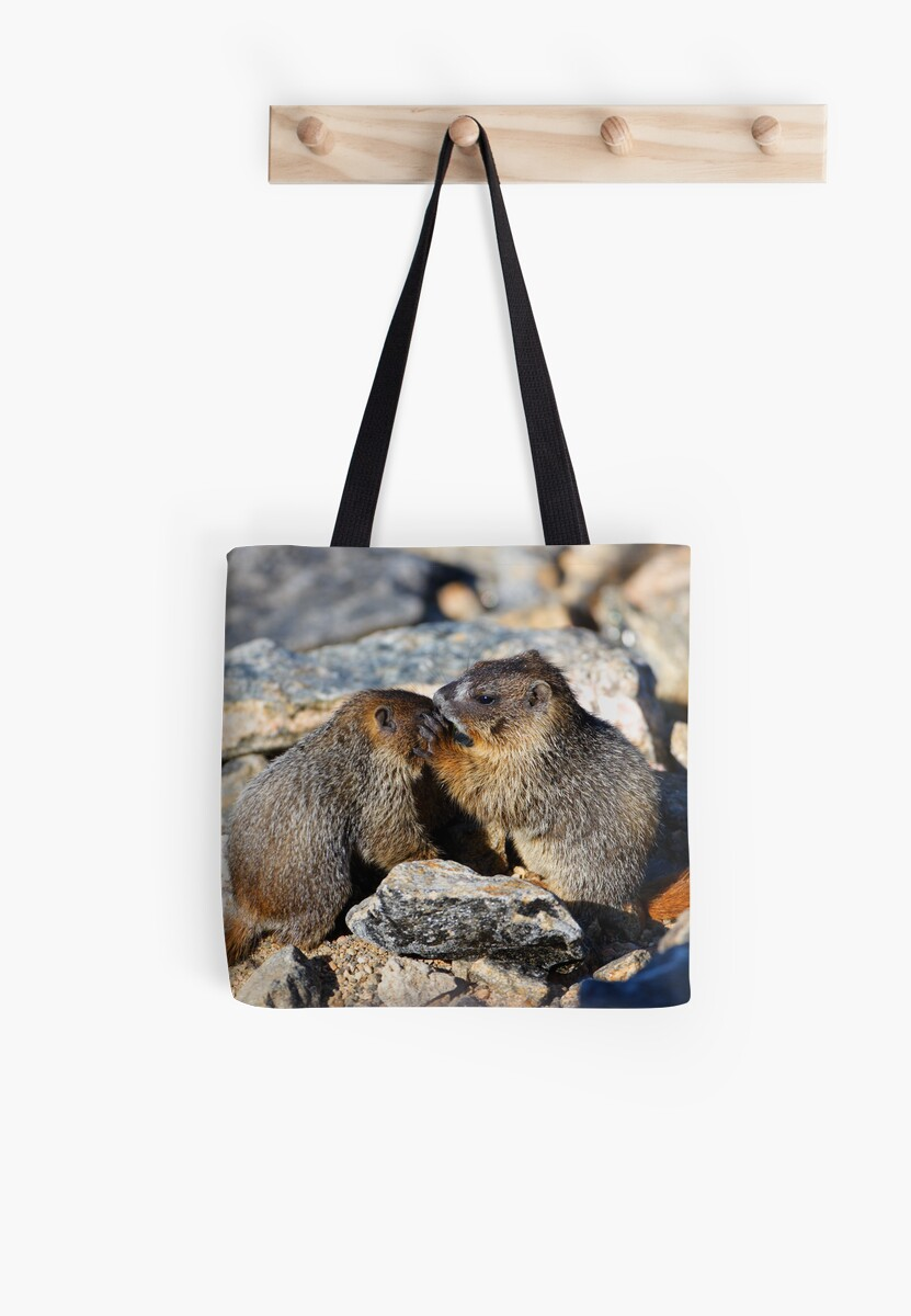 Marmot Babies Keeping Secrets by WorldDesign