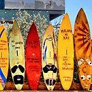 Hawaii Surfboard Fence by DJ Florek