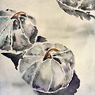Watercolor Blue Hubbard Squashes by Megan Cox