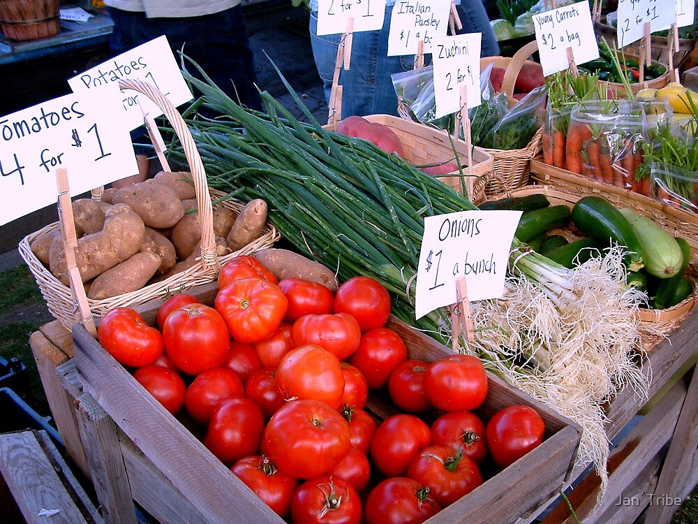 Ogden's Farmers Market 2008 - 1st of series by Jan  Tribe