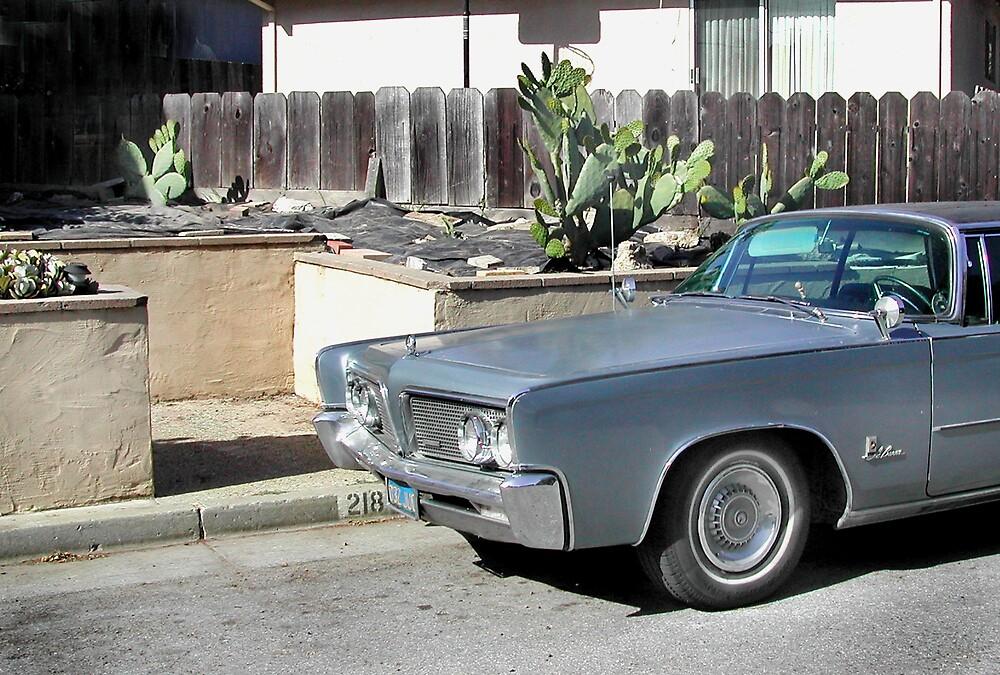 Cactus car by realschatan