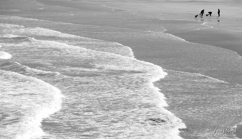 Porthmeor Beach by Amy Neal