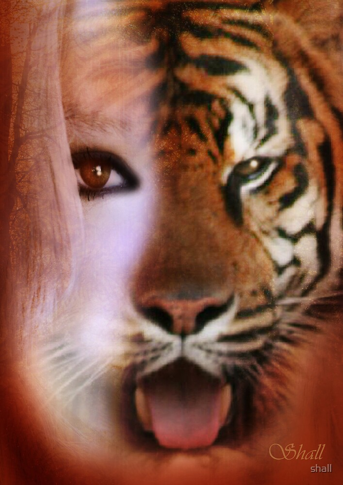 The Eye of the Tiger by shall