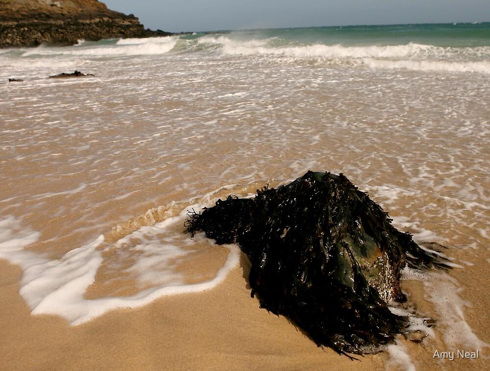 Porthgwidden Beach by Amy Neal