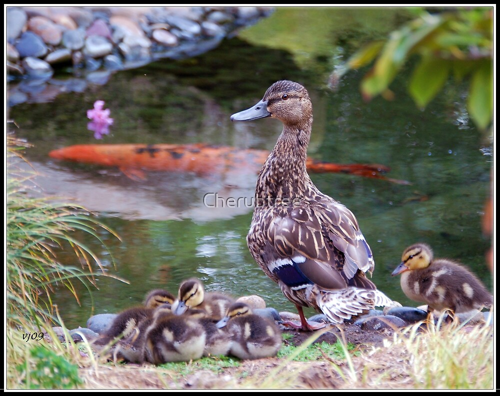 Mama and the Clan: by Cherubtree