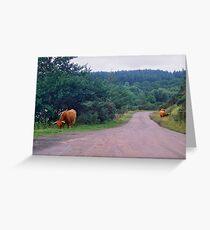 Heilan' Coos Greeting Card