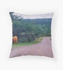 Heilan' Coos Throw Pillow