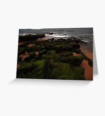 Moss and Rock Greeting Card