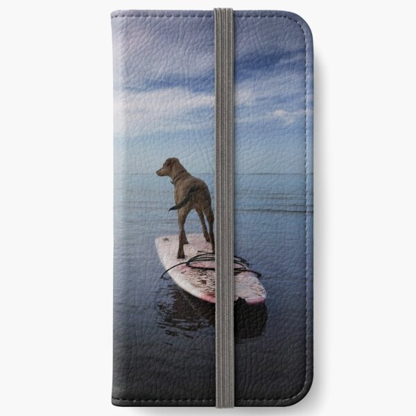 Owning the day iPhone Wallet