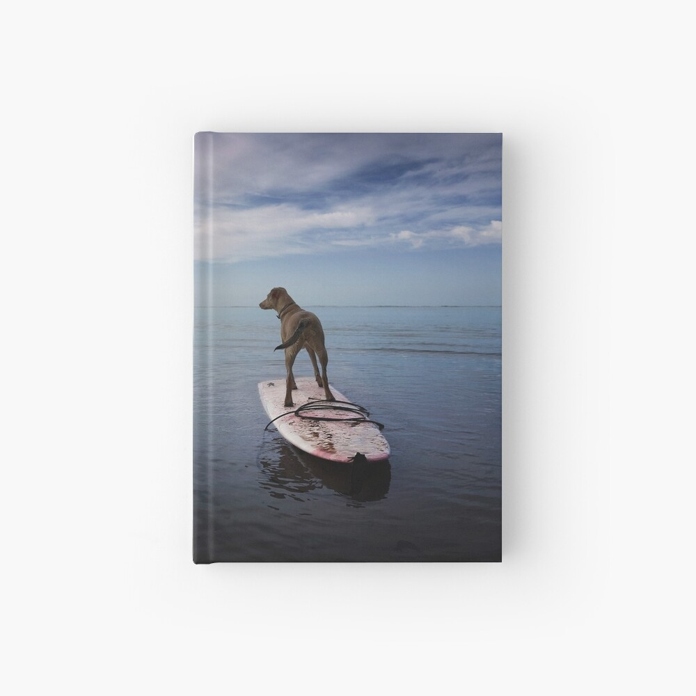 Owning the day Hardcover Journal