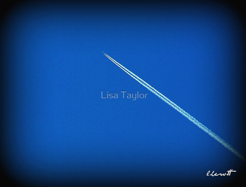 Into The Wild Blue Yonder by Lisa Taylor