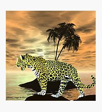 Jaguar on the Prowl Photographic Print