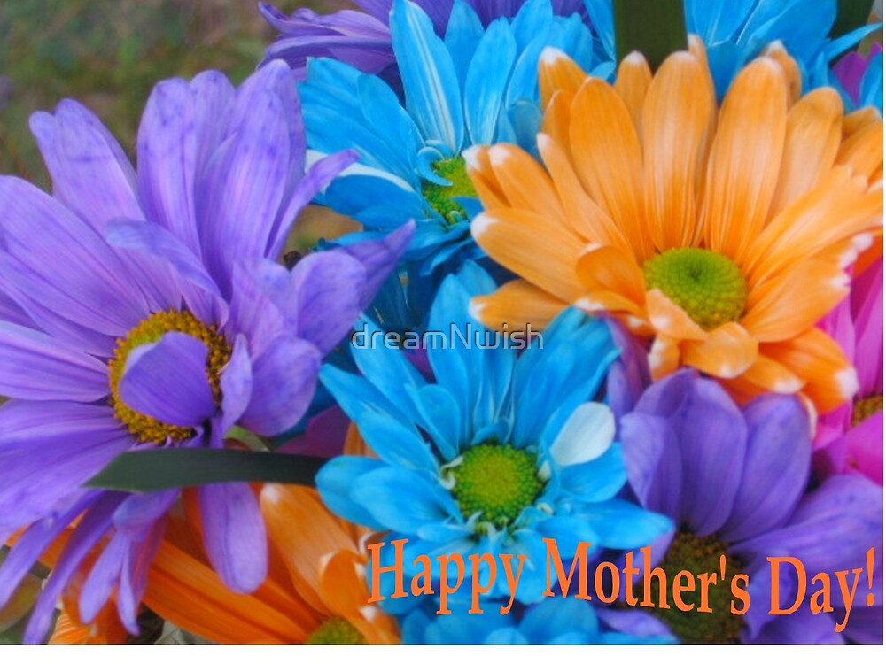 Tinted Daises - Happy Mother's Day by dreamNwish