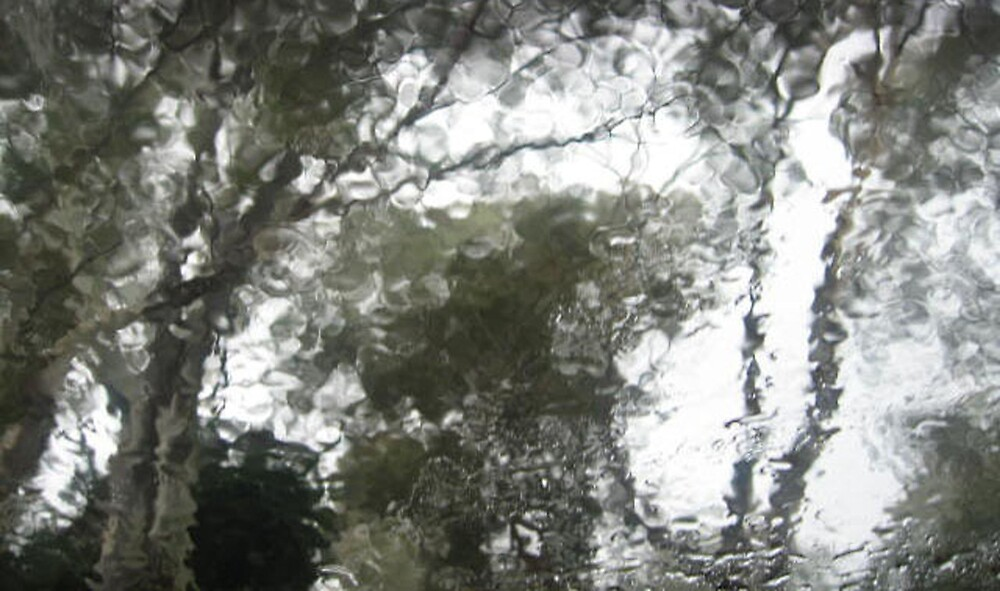 Through The Wet Windscreen II by antsp35