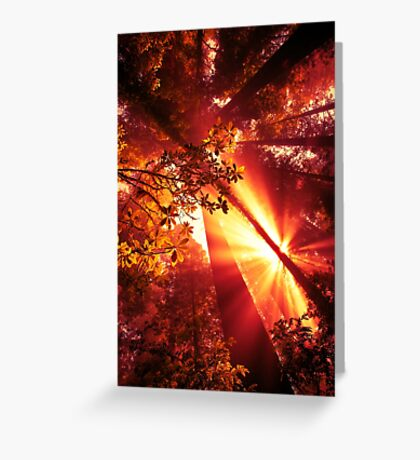 Red Sky Rise Greeting Card