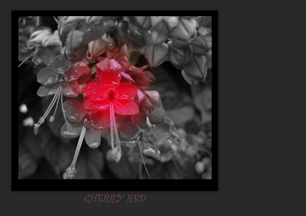 CHERRY RED by Dalzenia Sams