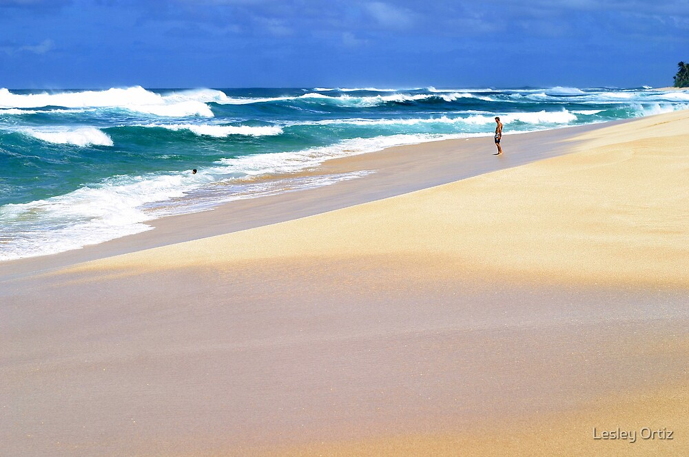 Beautiful Pacific  by Lesley Ortiz