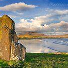 standing stones at Ballinskelligs/Waterville, County Kerry, Ireland by Madeleine  Weber