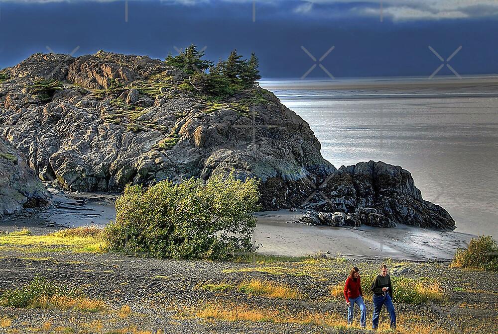 Beluga Point by Dyle Warren