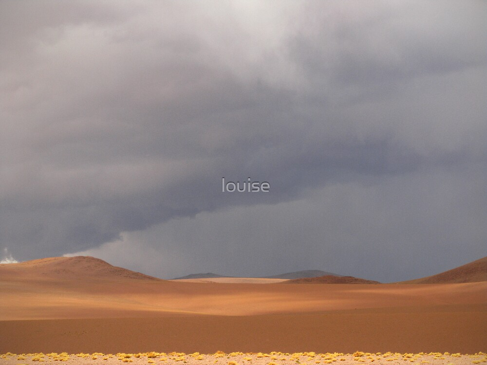 altiplano #2 by louise