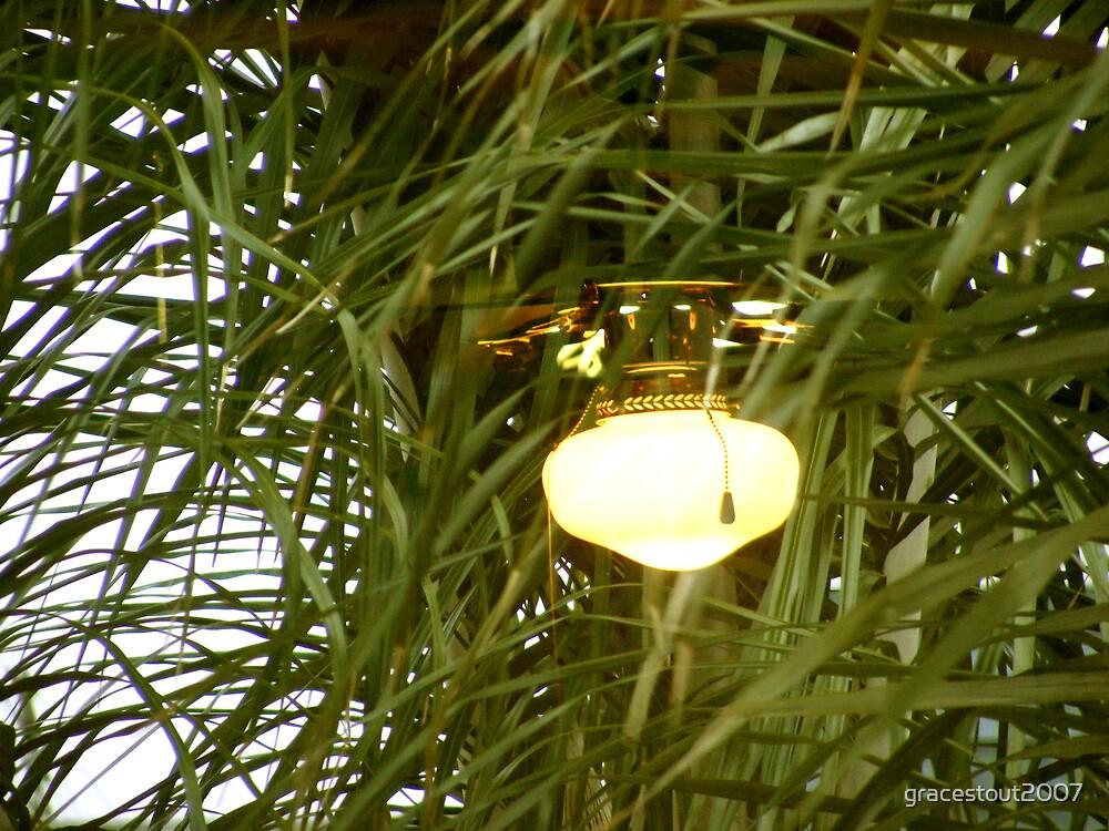 KITCHEN LAMP REFLECTION by gracestout2007