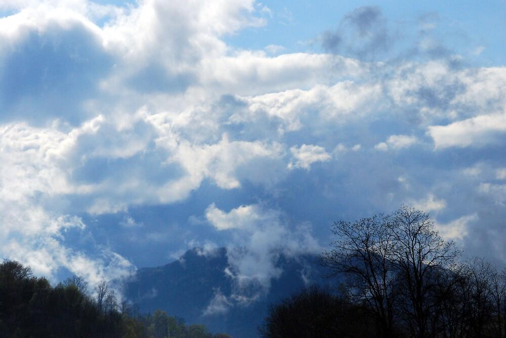 Mist on the Mountain iii by Michelle BarlondSmith