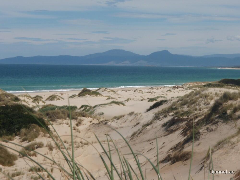 Peron Dunes Tasmania by DianneLac