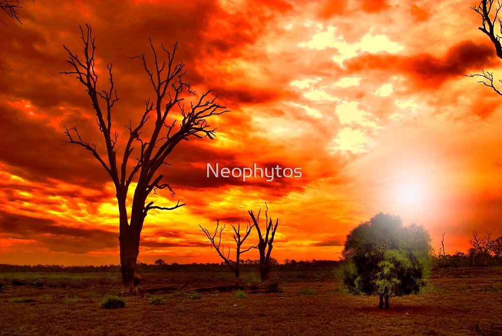 Newborn..! by Neophytos