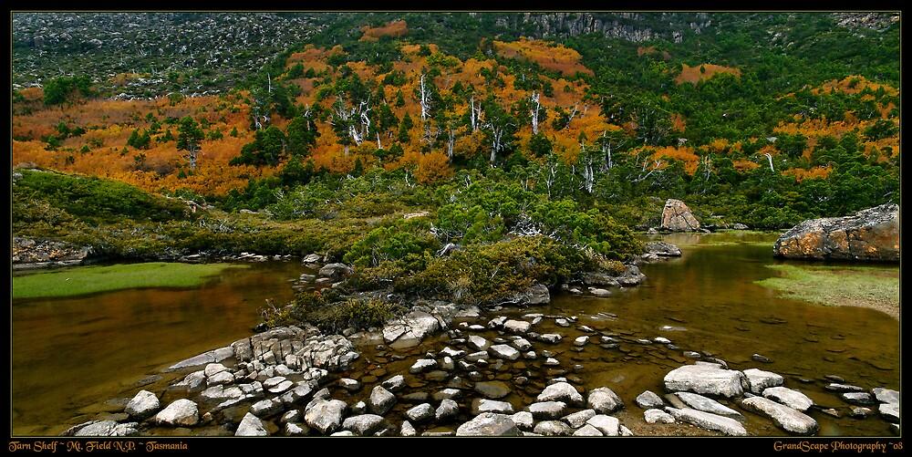 Tarn Shelfscape by Robert Mullner