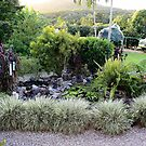 Our frog Pond by robmac