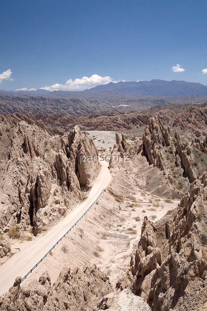 Ruta Nacional 40, Argentina, near Cafayate by parischris