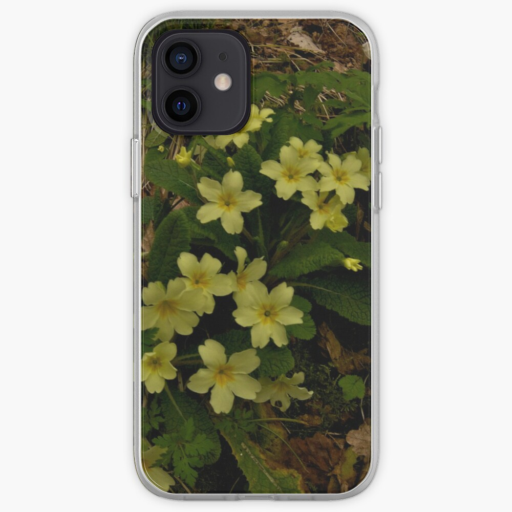 Primrose, Drumlamph Wood, County Derry iPhone Case & Cover