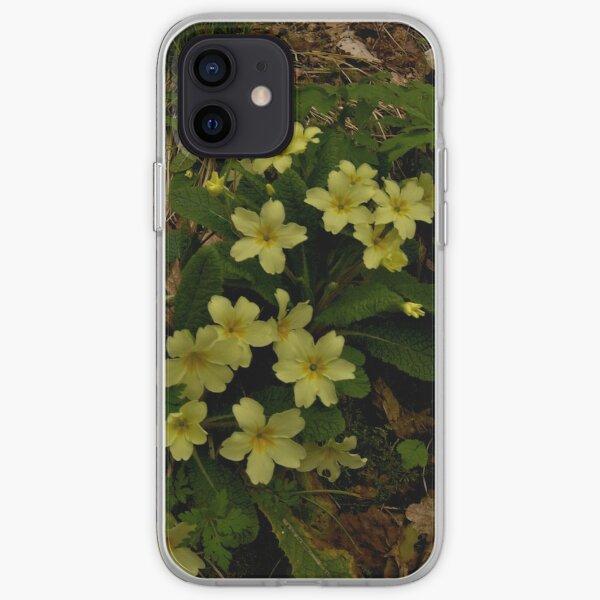 Primrose, Drumlamph Wood, County Derry iPhone Soft Case