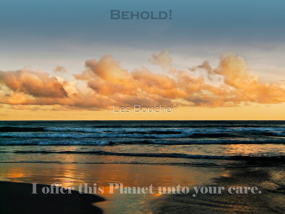 This is YOUR home, care for it. by Les Boucher