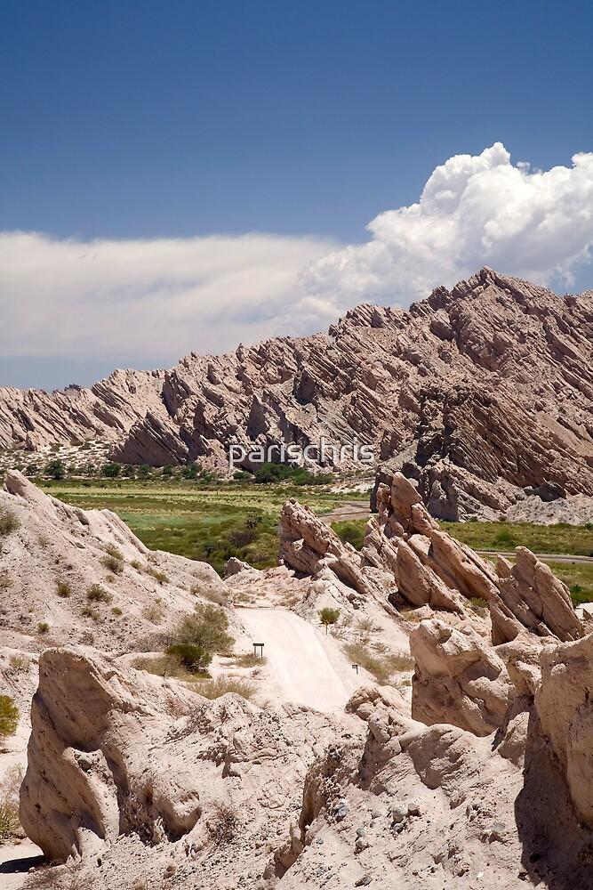 Route 40, Salta Province, Argentina by parischris