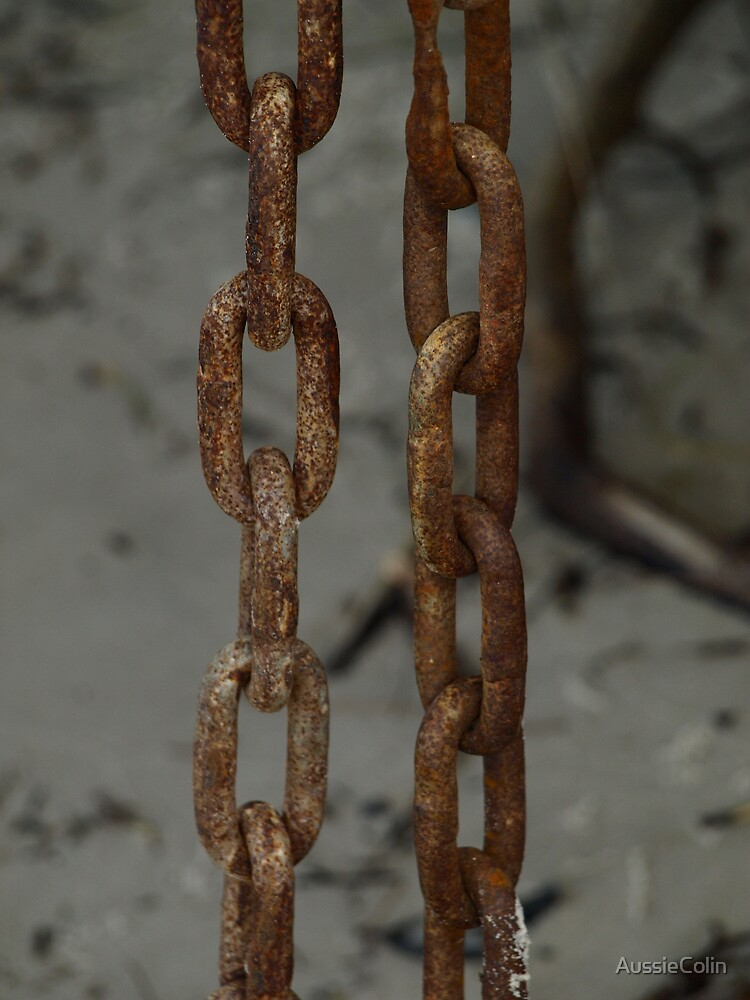 RUSTED CHAIN by Colin Van Der Heide