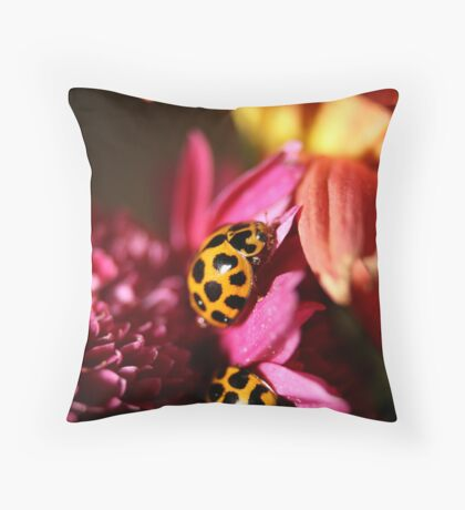 Ladybird Bliss Throw Pillow